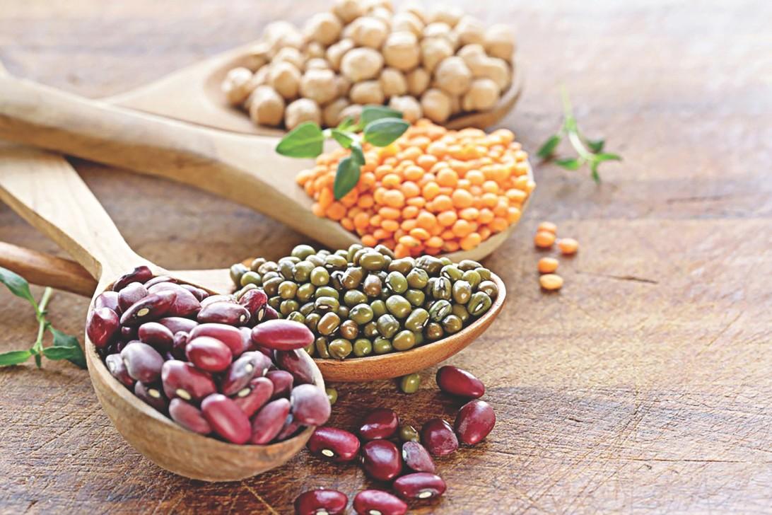 Top 10 Dietitians In Chennai List Of Top Dietitians In Chennai